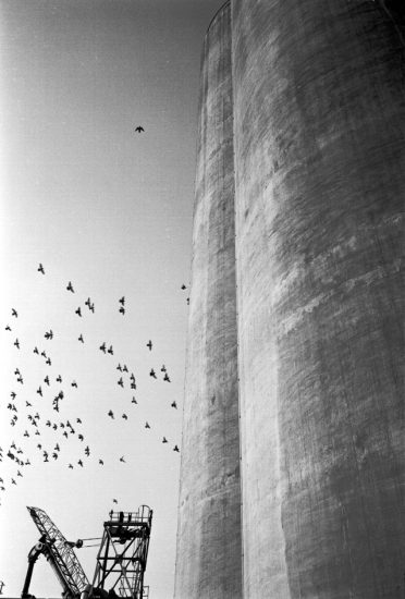 © 1982, Peter Marshall
